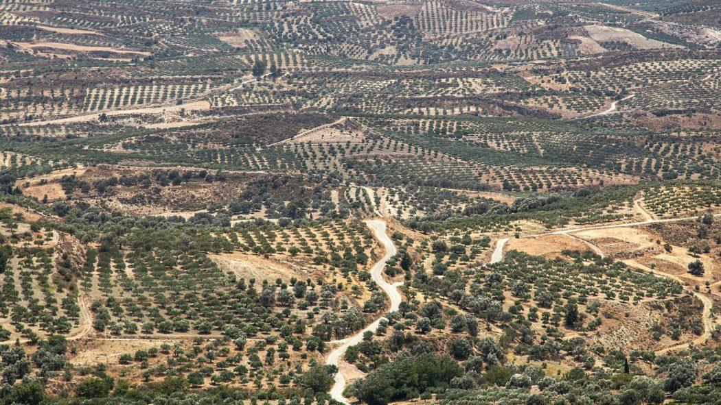 Choisir la Grèce pour un voyage inoubliable